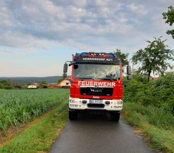 """22.06.2021 """"Baum auf Fahrbahn"""""""